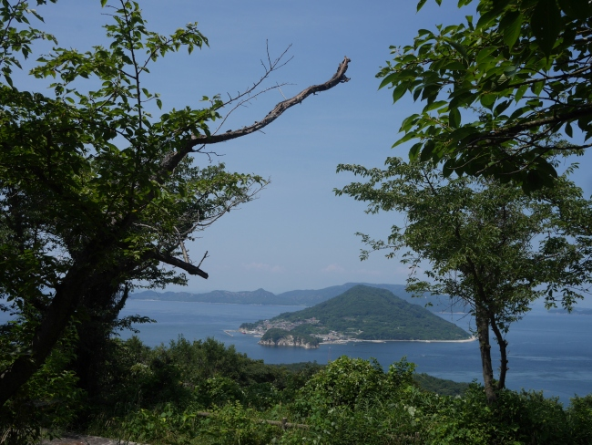 View from the top of the mountain in Megijima